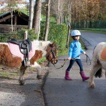 balade-cheval-poney-port-camargue.jpg